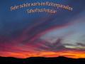 Reiterparadies-Talhof_Klassenfahrt-2021_74