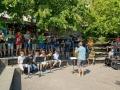 Schulfest_2014_09