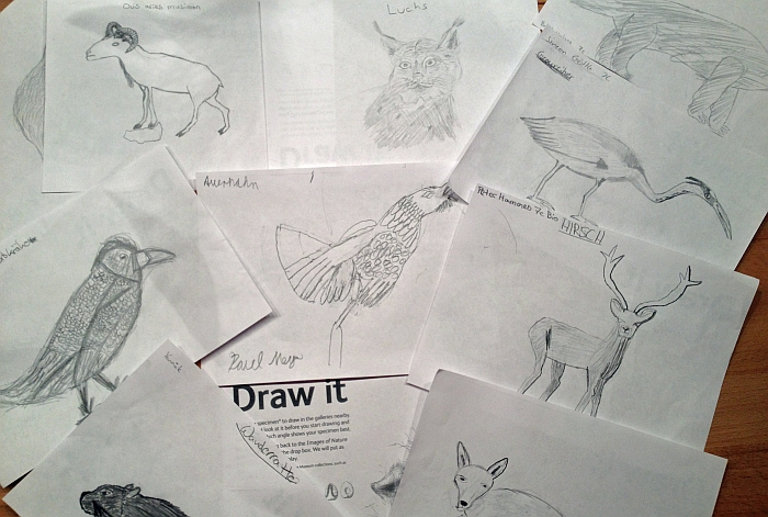 Draw_it_01